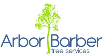 Arbor Barbor Redwood Tree Removal